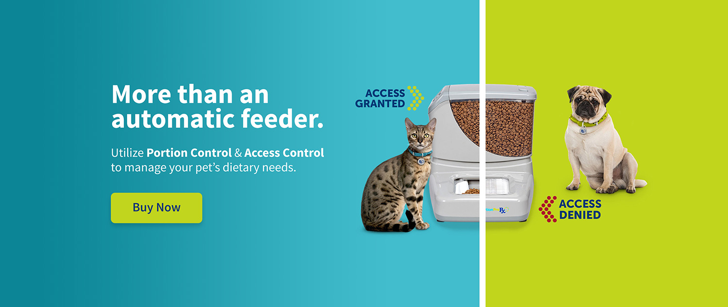 More than an automatic pet feeder.